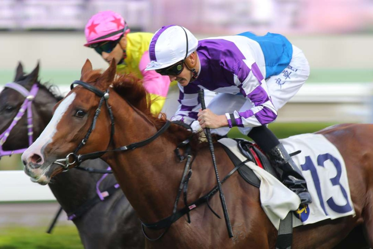 New Asia Sunrise held off a luckless Racing Supernova to land a betting plunge. Photo: Kenneth Chan