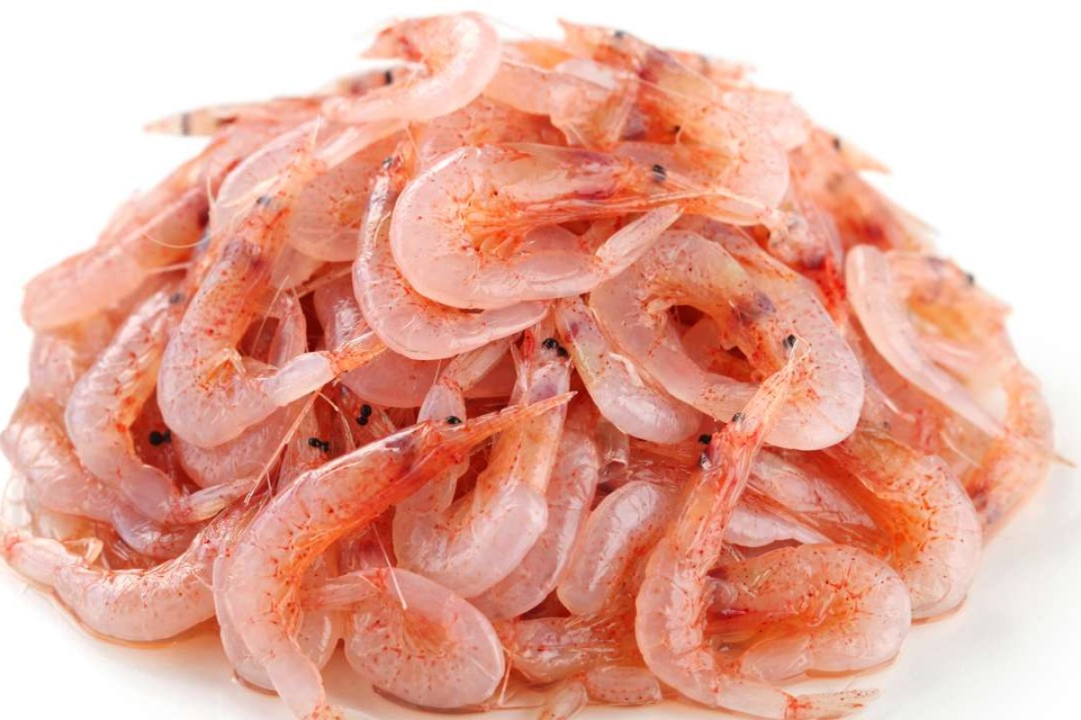 Susan jungs recipes for shrimp pasta and fried rice post magazine sakura ebi ccuart Gallery