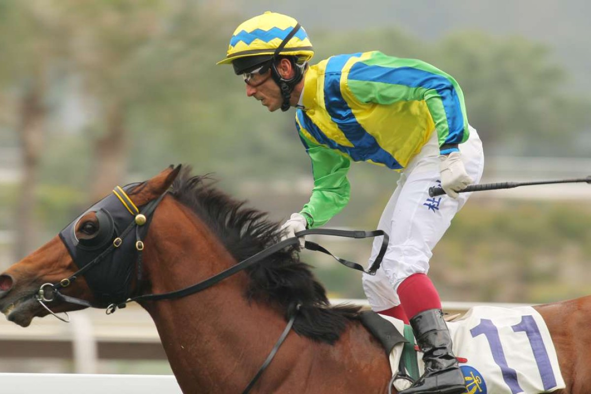 Rich Tapestry has travelled the world, only racing at Sha Tin twice since the start of 2014. Photo: Kenneth Chan