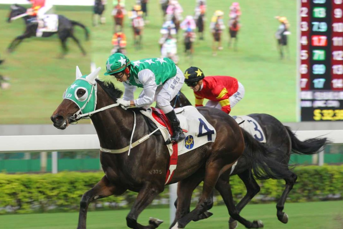 Pakistan Star's stunning wins have created a huge amount of interest on social media. Photos: Kenneth Chan