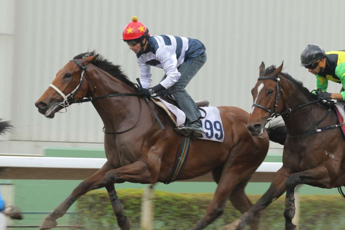 Winfield and Douglas Whyte stretch out in a recent trial. Photos: Kenneth Chan