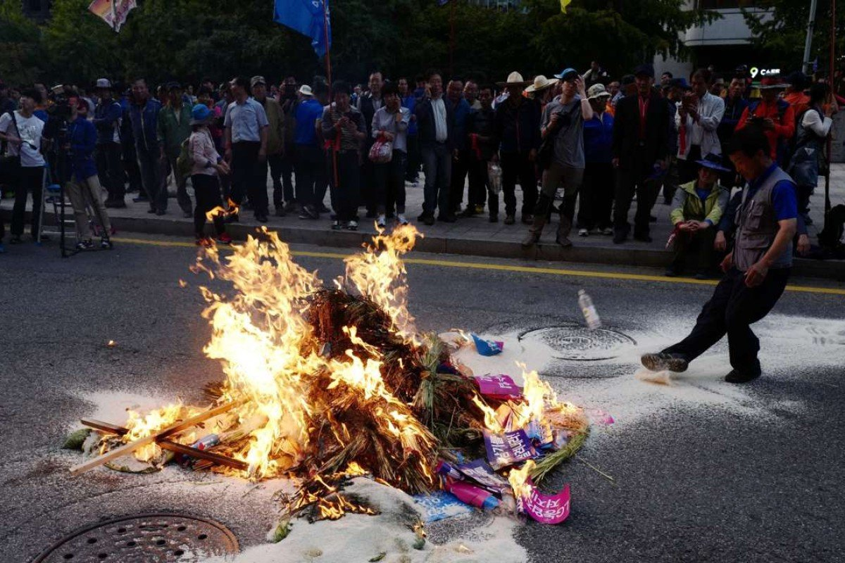 South Korean farmers burn sheaves of rice after marching against the government's agricultural policy in Seoul, demanding the government stop rice imports for meals and come up with measures to resolve the incident involving Baek Nam-ki, a farmer who has been in critical condition since November 2015 when he was knocked down by a police water cannon during a protest rally. Photo: EPA
