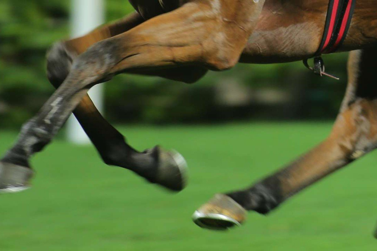 Australian horse racing has been blighted by a string of doping and corruption crises. Photo: SCMP Pictures