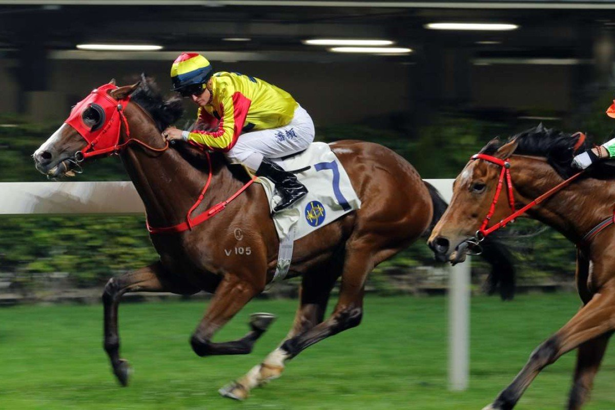 Super Sprinter looks ready to win another race. Photos: Kenneth Chan.