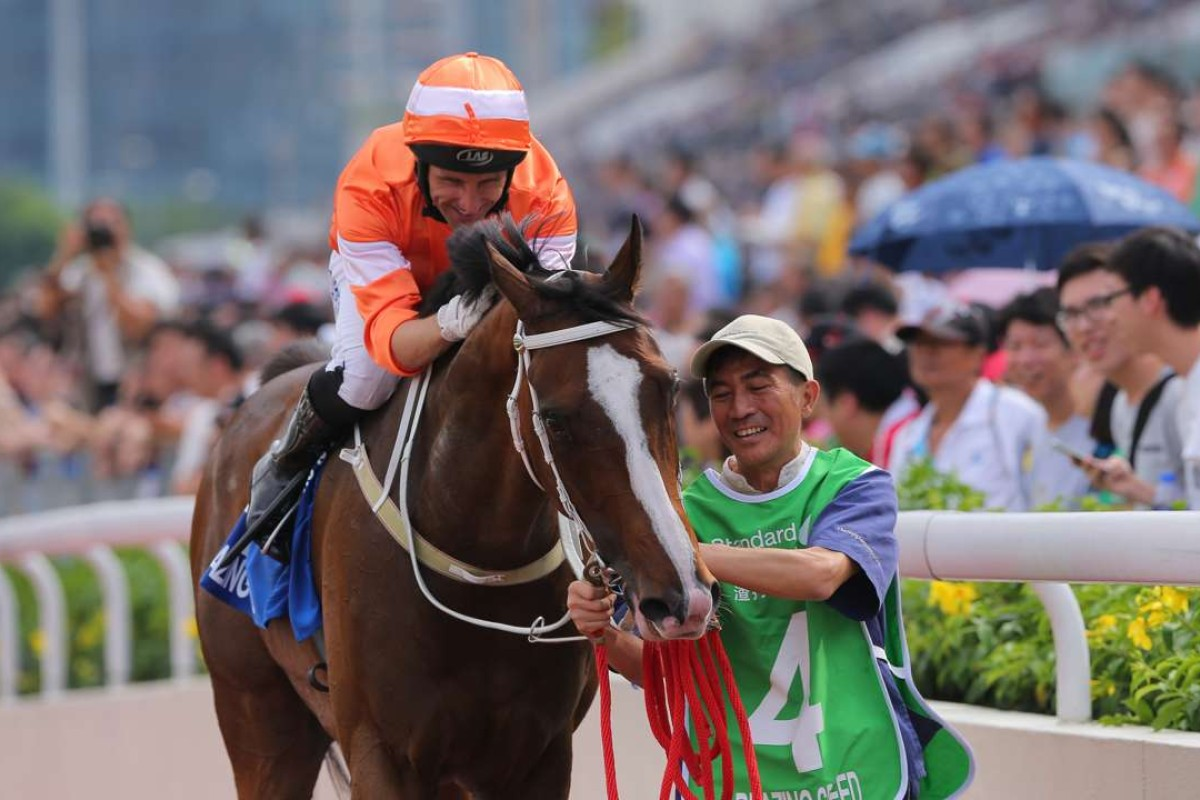 Neil Callan shows Blazing Speed some affection after winning the Group One Champions & Chater Cup. Photos: Kenneth Chan