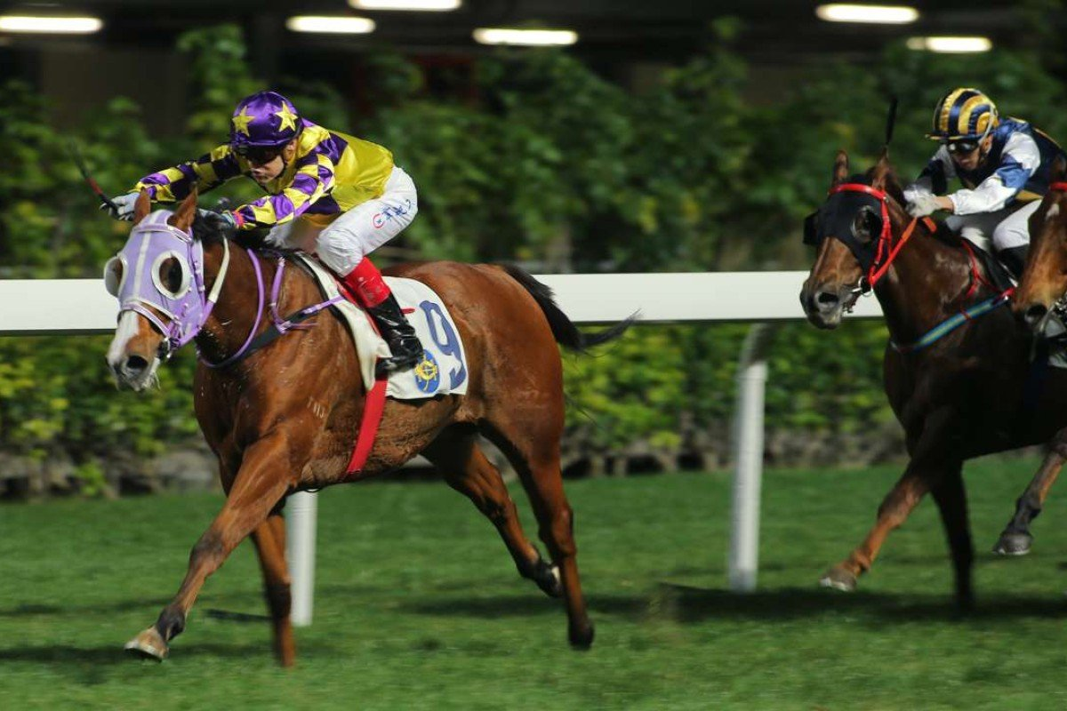 Wisky (right) finishes second to Travel Ambassador during Wednesday night's meeting at Happy Valley. Photos: Kenneth Chan