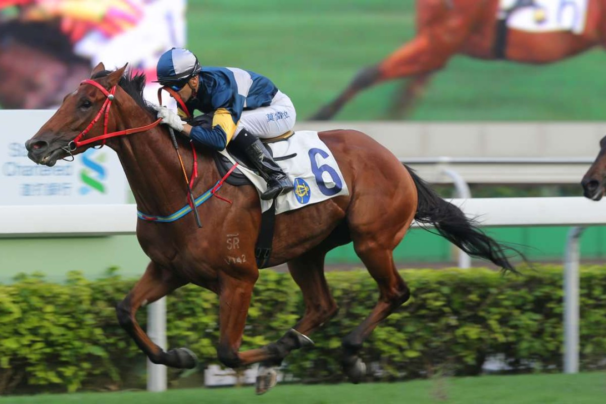 My Darling speeds away to win last May and on Tuesday the four-year-old can push his Group One Hong Kong Classic Mile claims with another win. Photos: Kenneth Chan