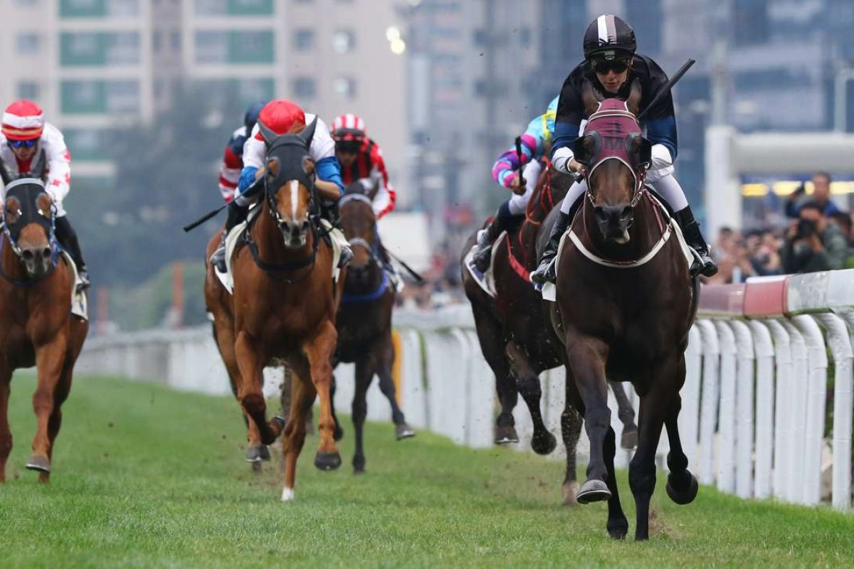 Sam Clipperton guides Bad Boy to victory last start. Photos: Kenneth Chan