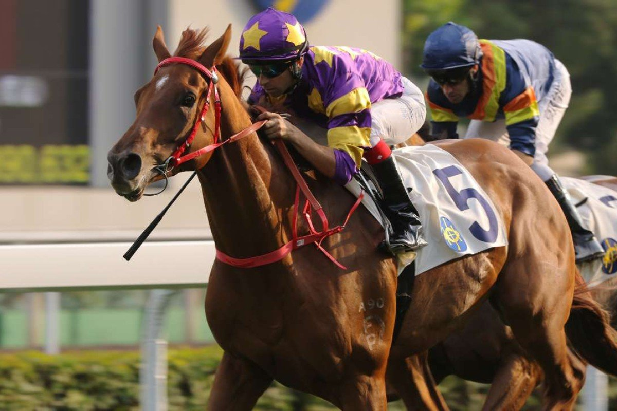 Joao Moreira steers Western Express to victory at Sha Tin on Sunday. Photos: Kenneth Chan