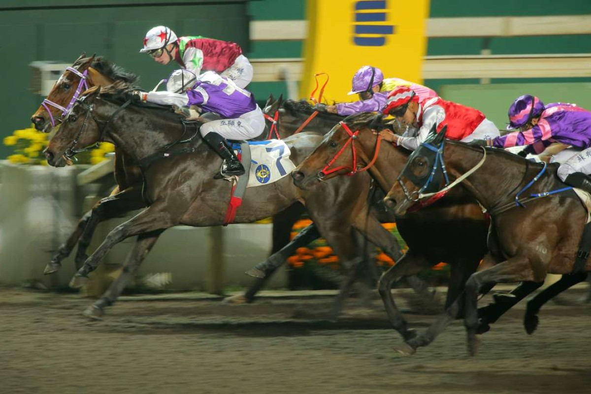 Dundonnell (purple and pink silks) and Fabulous One (maroon, white and green silks) finish third and fourth in a crazy finish at Sha Tin last month. Both horses kick off campaigns in Dubai on Saturday. Photos: Kenneth Chan