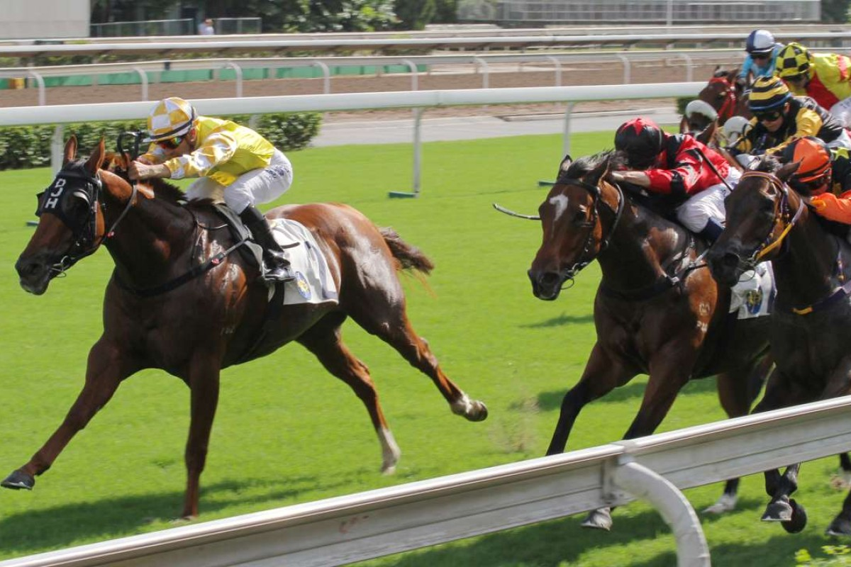 Joao Moreira guides Penang Hall to victory in November 2015. Photos: Kenneth Chan