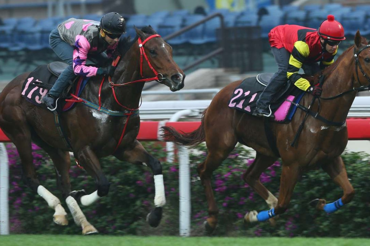 Amazing Kids (Joao Moreira, left) moves up alongside Lucky Bubbles (Brett Prebble) in a high quality trial at Sha Tin on Tuesday. Photos: Kenneth Chan