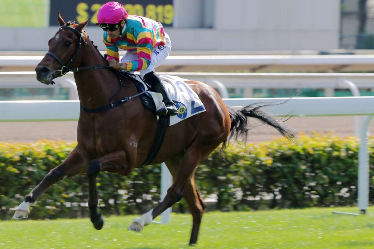 Super Sixteen wins his first start in a race at Sha Tin. Photos: Kenneth Chan.