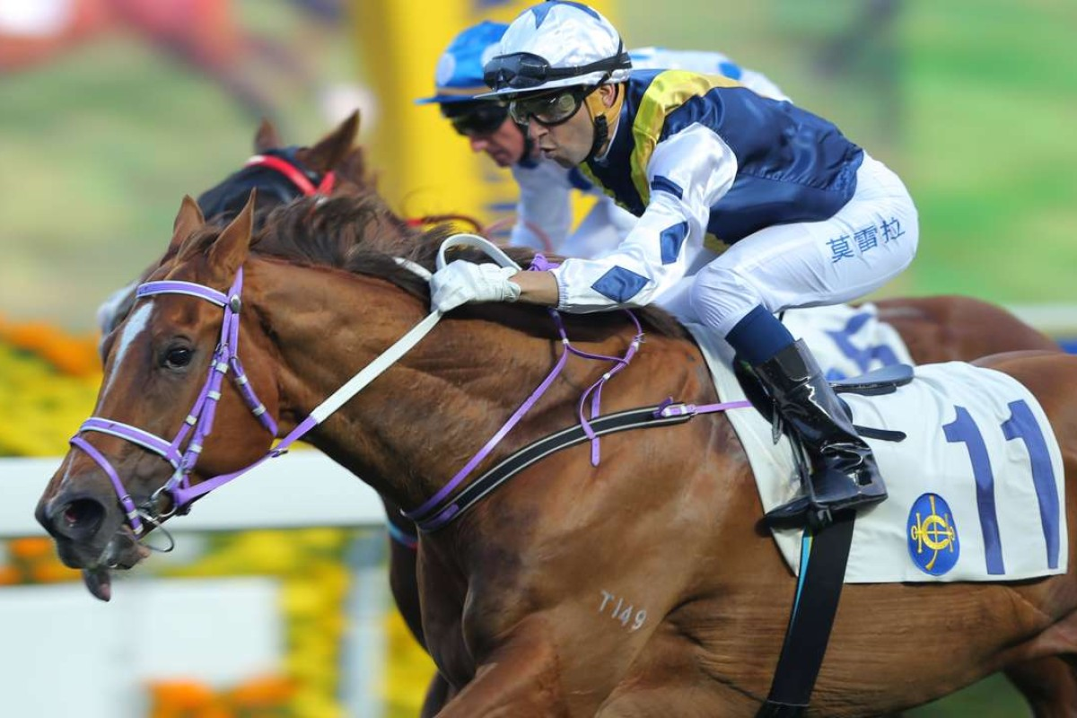 Joao Moreira rides Redkirk Warrior to victory at Sha Tin in 2015. Photos: Kenneth Chan