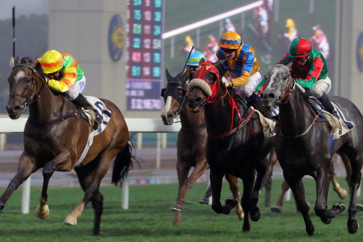 Neil Callan guides Mighty Maverick to victory at Sha Tin in March 2016. Photos: Kenneth Chan