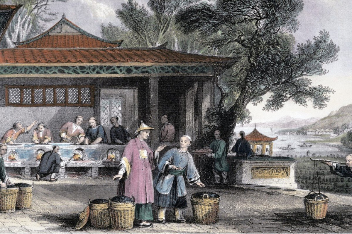 The Culture and Preparation of Tea, China (1843), by English artist Thomas Allom.