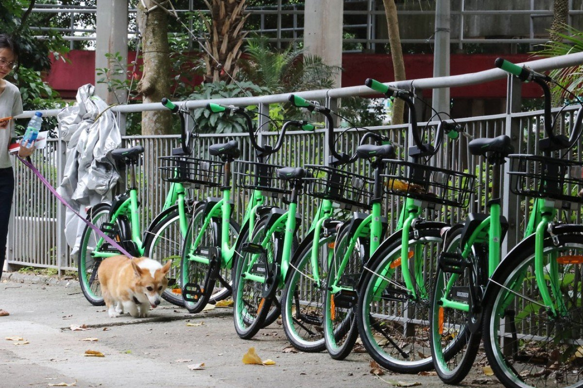Gobee bikes on Mei Tin Road, in Tai Wai. Picture: Felix Wong