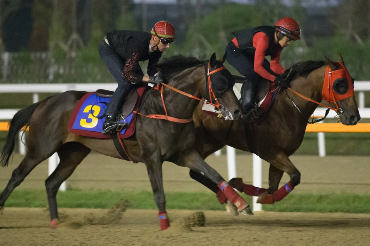 Circuit Land (left) and Lucky Year work at Seoul on Friday. Photos: Kenneth Chan