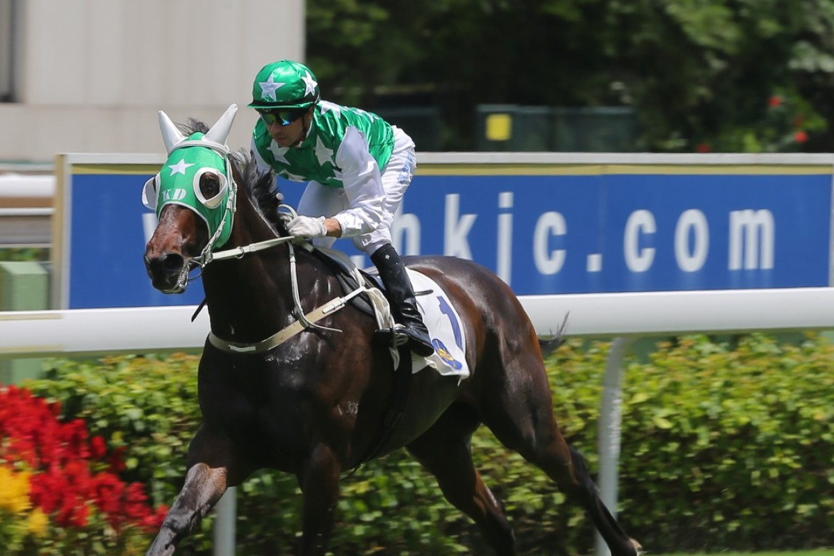 Joao Moreira and Pakistan Star. Photos: Kenneth Chan