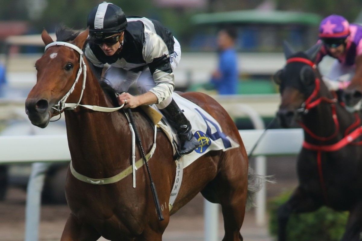 Zac Purton guides Exultant to victory at Sha Tin on Saturday. Photos: Kenneth Chan