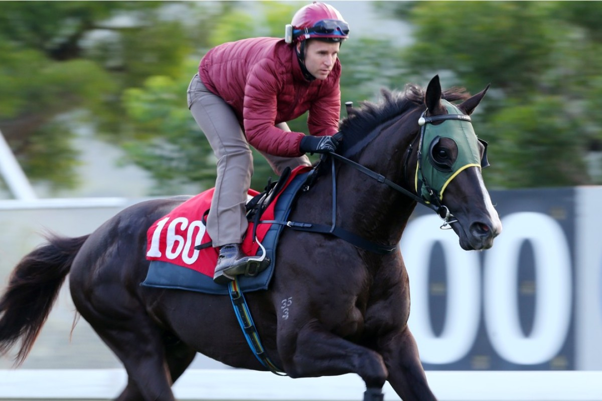 Ruthven gallops down the back straight at Sha Tin on December 28. Photos: Kenneth Chan.