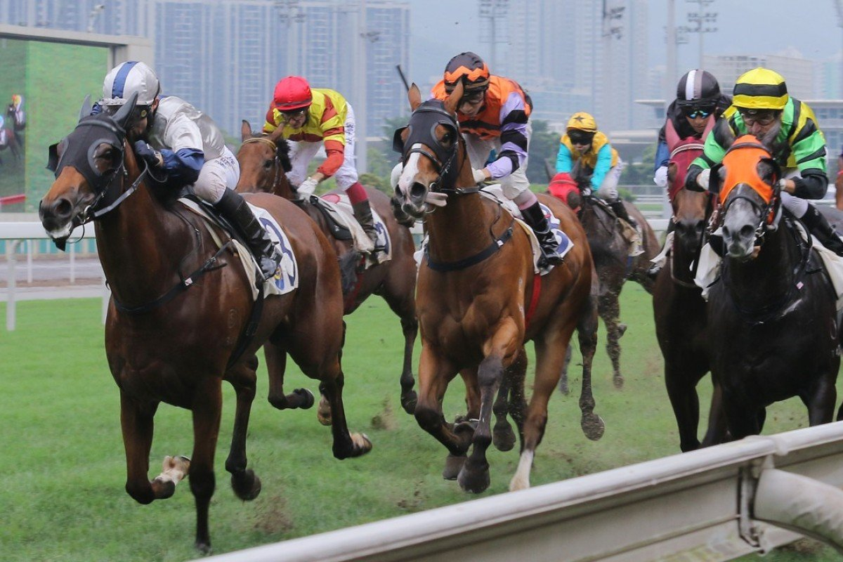 Archippus (left) is no stranger to starring down the straight 1,000 metres at Sha Tin and gets his chance in Group company in the Bauhinia Sprint on Sunday. Photos: Kenneth Chan