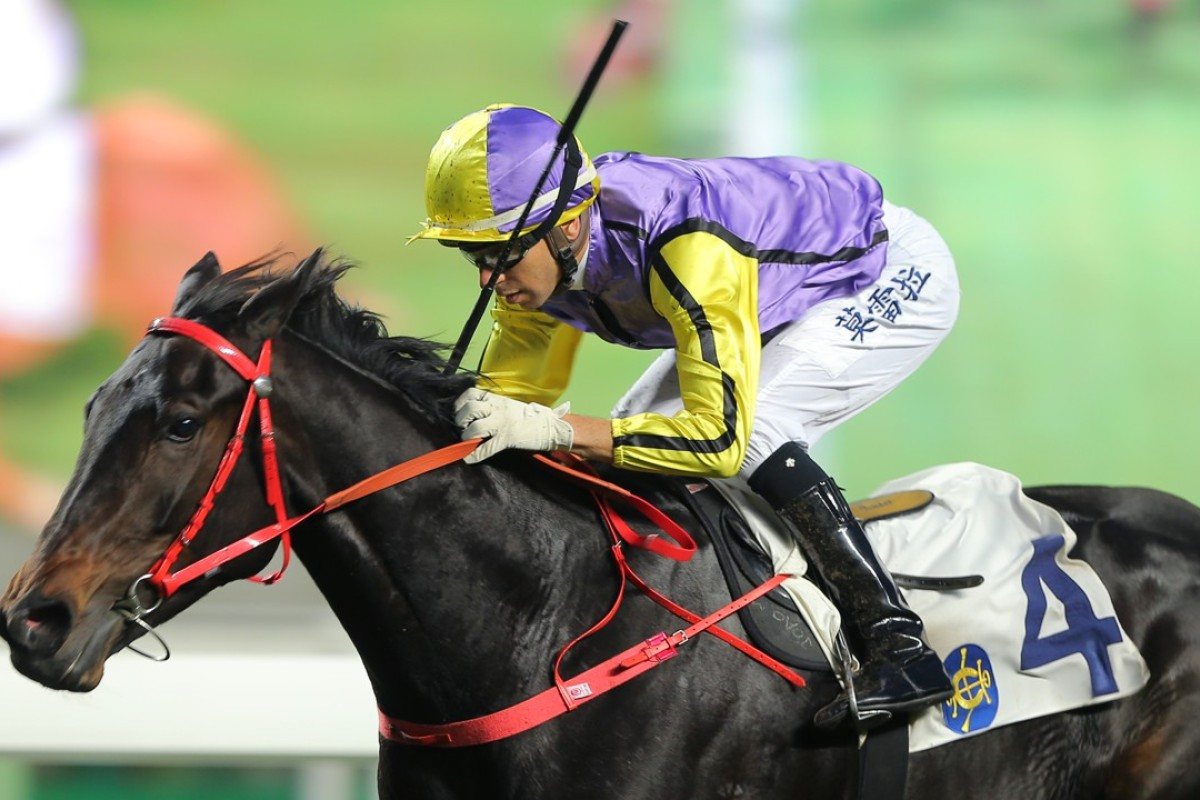 Joao Moreira encourages Time To Celebrate to victory at Sha Tin on Sunday. Photos: Kenneth Chan
