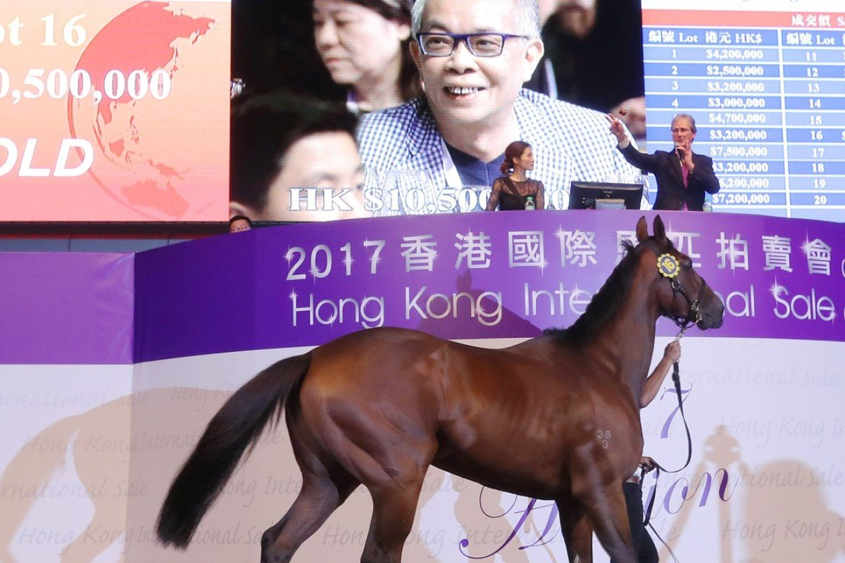 This Australian-bred gelding fetched a record HK$10.5 million at the 2017 Hong Kong International Sale. Photos: Kenneth Chan
