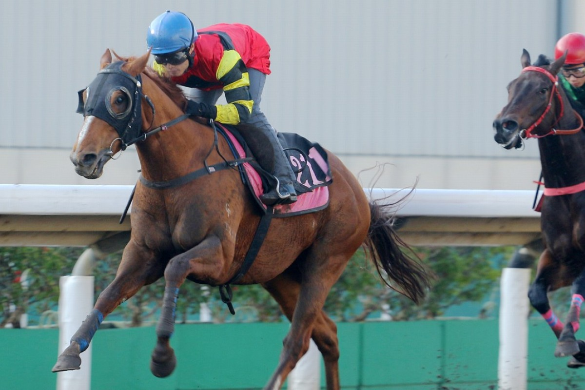 Lucky Bubbles trials for Keith Yeung at Sha Tin on January 16. Photos: Kenneth Chan.