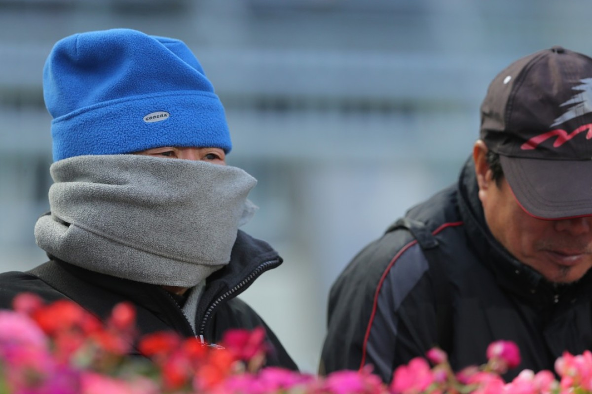 Racing fans brace the cold at Sha Tin on Sunday. Photos: Kenneth Chan