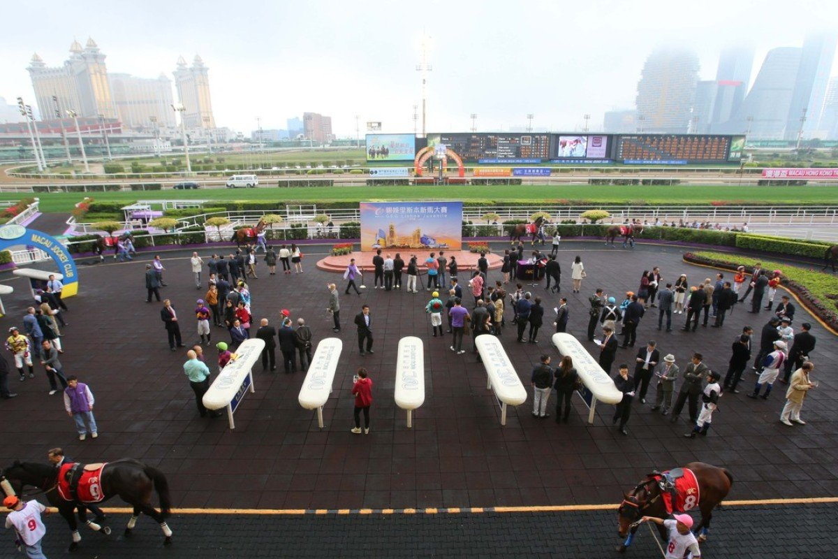 Casinos dominate the backdrop as Macau stages its big race day at Taipa. Photos: Kenneth Chan