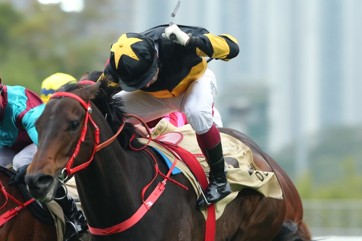 Olivier Doleuze drives D B Pin to victory in the Group One Centenary Sprint Cup. Photos: Kenneth Chan