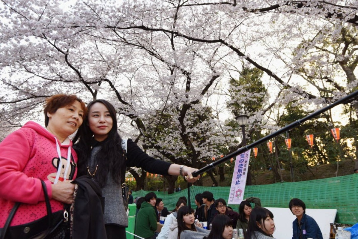 Chinese tourists in Tokyo's Ueno Park during cherry blossom season. Picture: Kyodo
