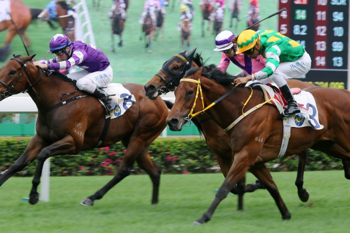 Strathspey (left) finishes second to Namjong Plus on Sunday. Photo: Kenneth Chan