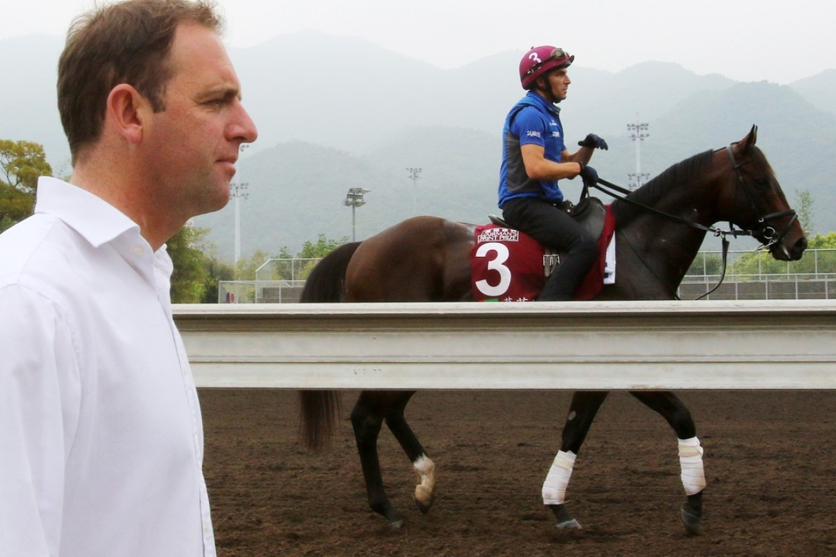 Trainer Charlie Appleby follows Blue Point off the track at Sha Tin on Friday. Photos: Kenneth Chan