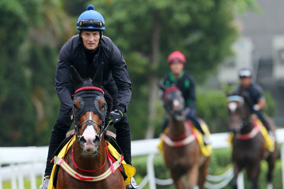 Victory Megastar (left) leads his stablemates out to work at Sha Tin on Thursday morning. Photos: Kenneth Chan