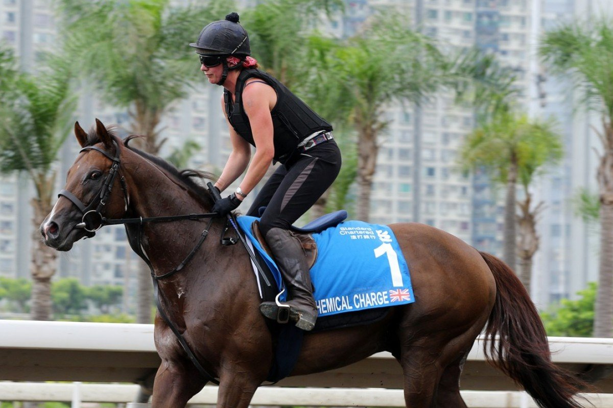 Chemical Charge works on the all-weather track at Sha Tin. Photos: Kenneth Chan