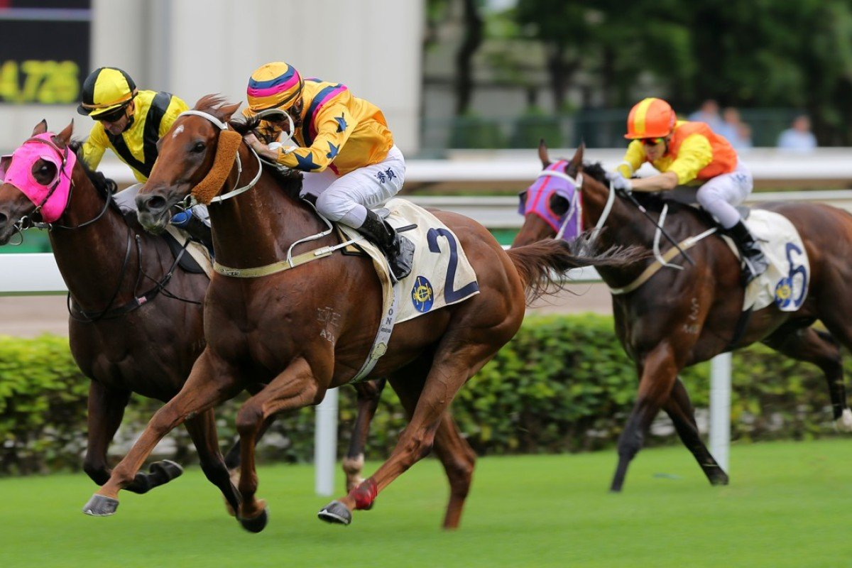Winner's Way takes out the HKSAR Chief Executive's Cup at Sha Tin on Sunday. Photos: Kenneth Chan