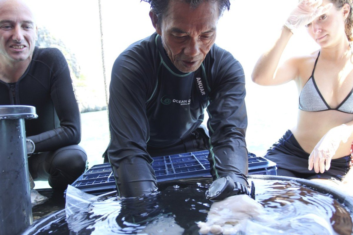Conservationist Anuar Abdullah teaches a course on coral propagation on Koh Ha, in Thailand. Picture: Laura Villadiego