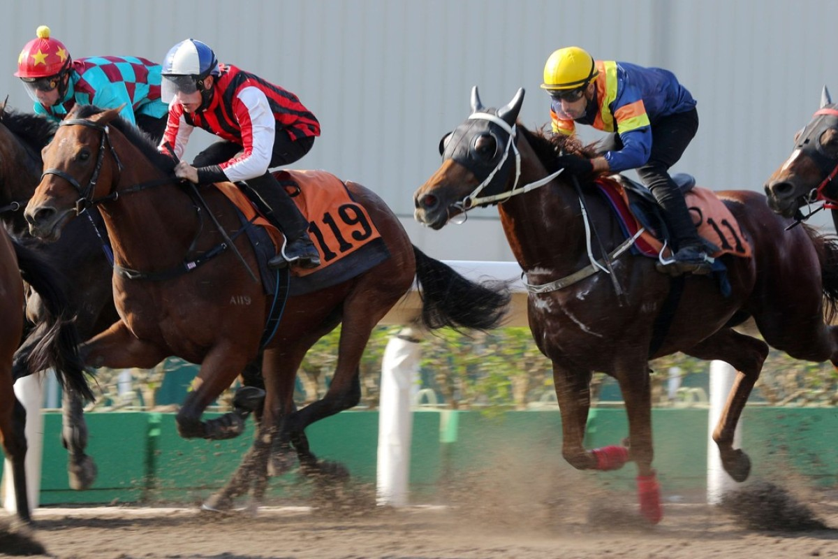 Nassa (left) hits the line nicely in a barrier trial at Sha Tin on Friday morning. Photos: Kenneth Chan