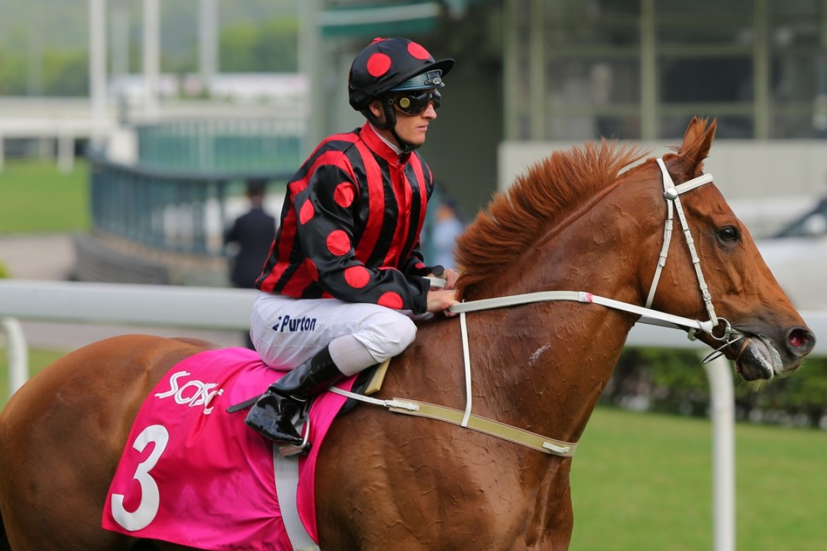 Jockey Zac Purton returns to the winners circle after winning on Time Warp in the Group Two Sa Sa Ladies' Purse (1,800m). Photos: Kenneth Chan