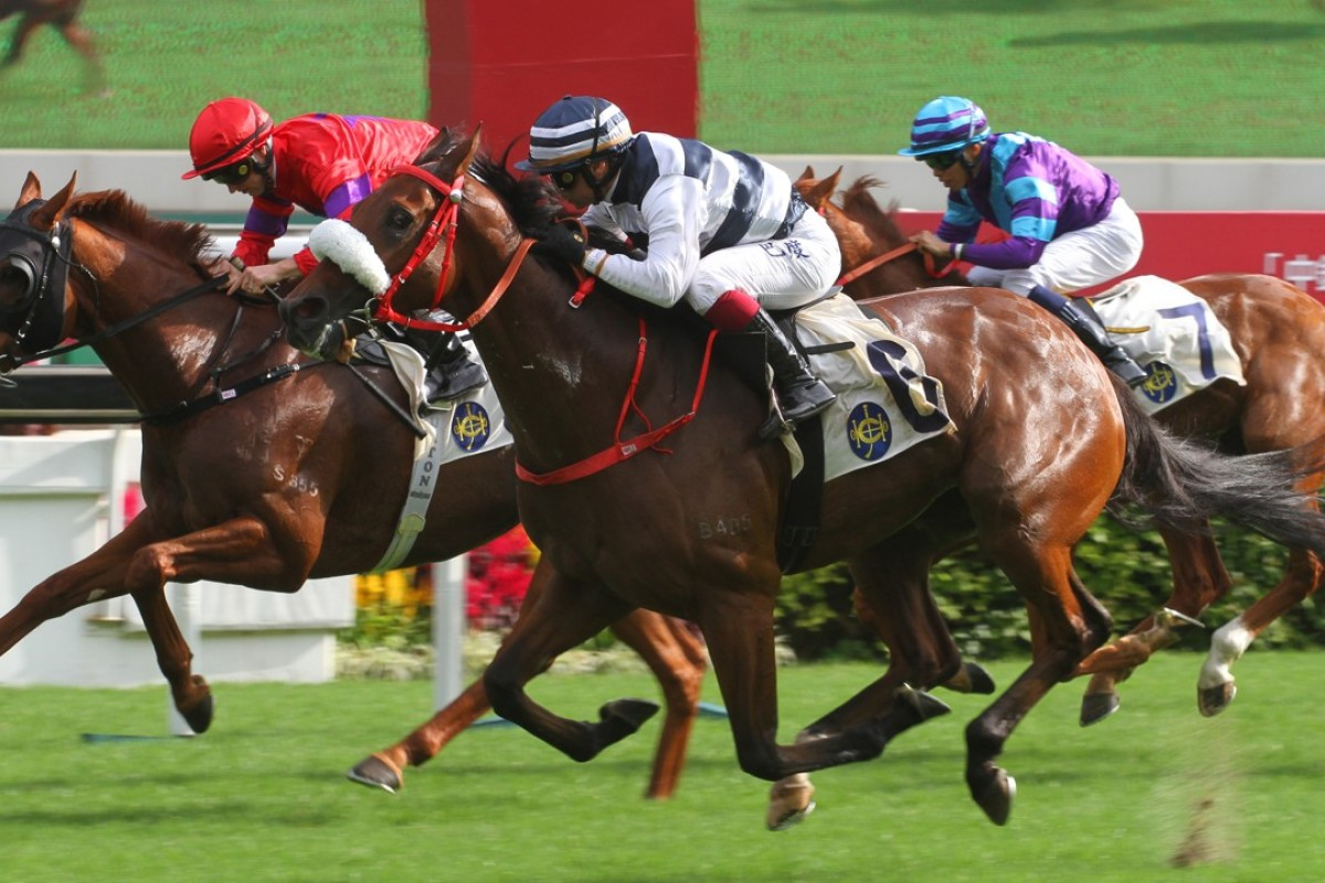 Harmony Victory (middle) beats Victory Boys (left) and Charity Go (right) at Sha Tin on Sunday. Photos: Kenneth Chan