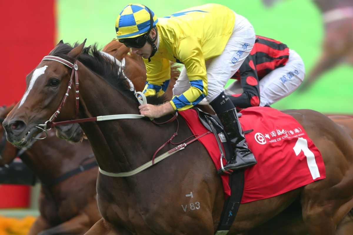 HKIR: injury rules Werther out of Hong Kong Cup | HK ...