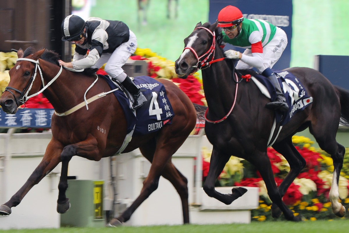 Exultant (left) takes out the Group One Hong Kong Vase in December. Photos: Kenneth Chan