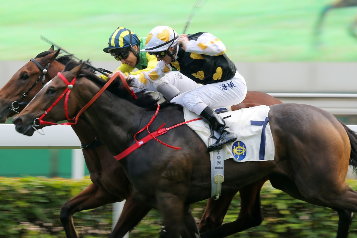 Matthew Poon lifts Speedy Dragon (left) to victory at Sha Tin on Saturday. Photos: Kenneth Chan
