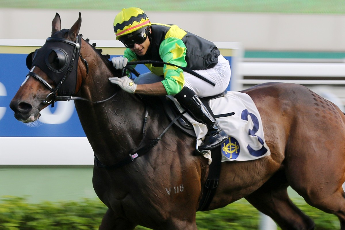 Gorgeous King wins in his only start this season. Photos: Kenneth Chan