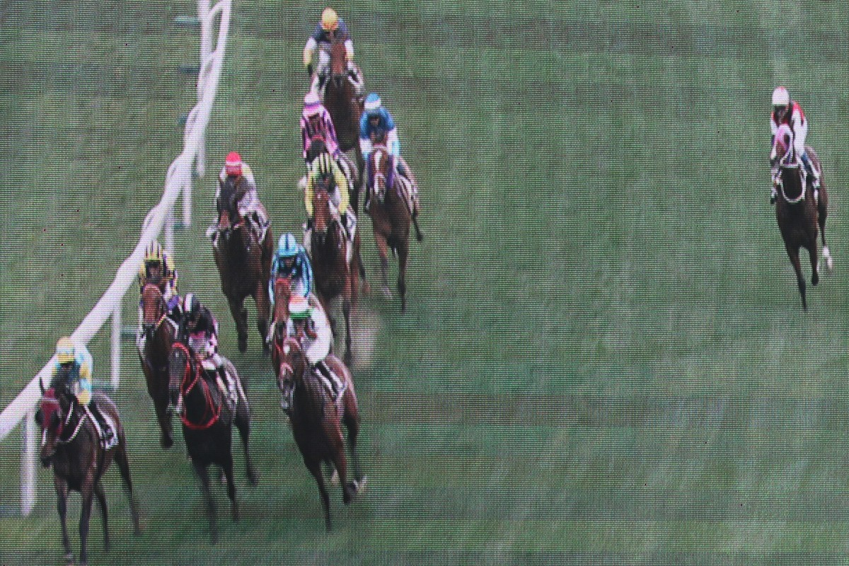 Multimillion (right) runs off the track despite the urgings of Douglas Whyte. Photos: Kenneth Chan