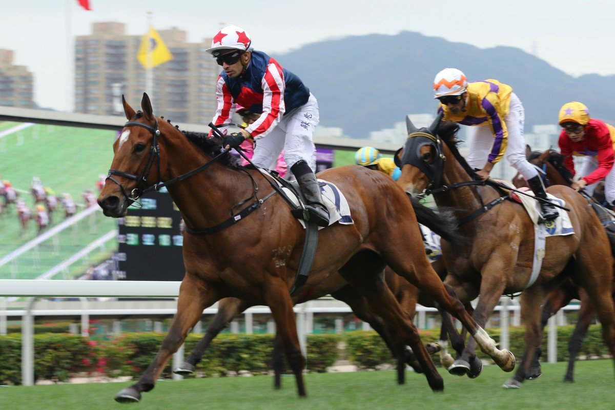 Refined Treasure returns to his best under Silvestre de Sousa at Sha Tin on Sunday. Photos: Kenneth Chan