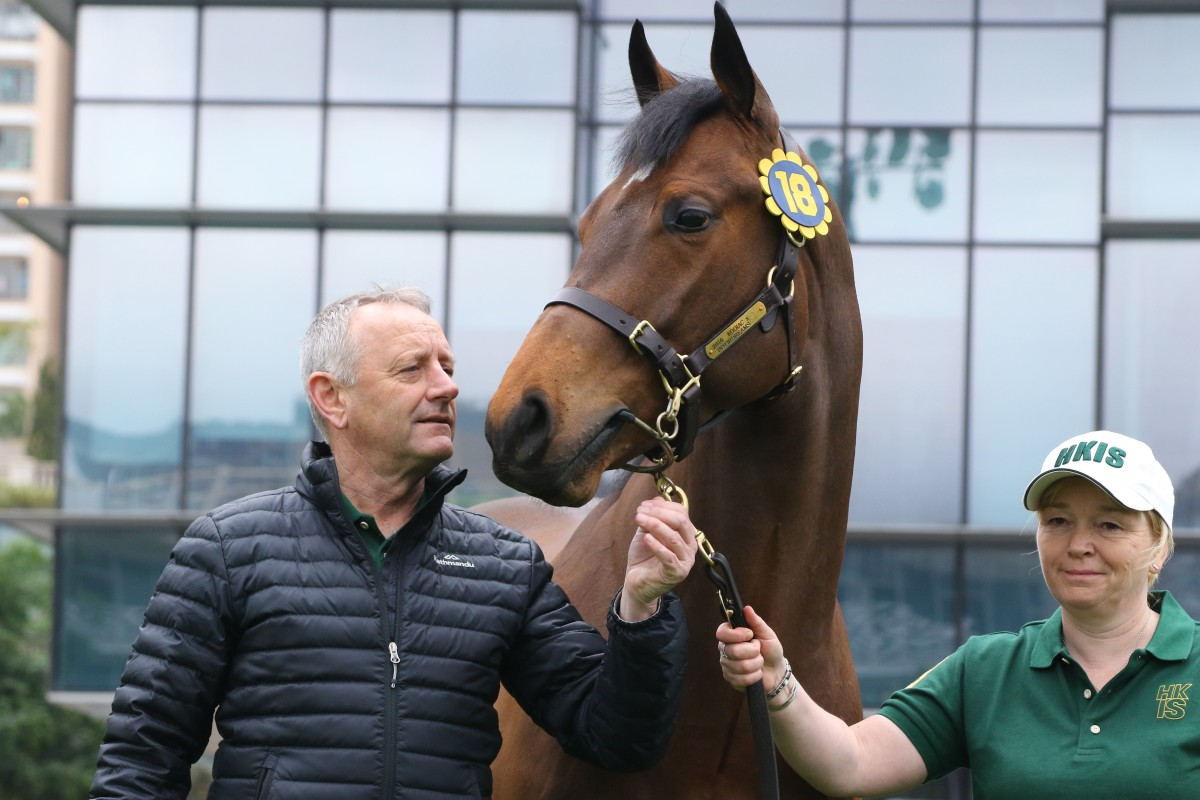The Jockey Club's Mark Richards with one of the horses that go under the hammer on Friday. Photos: Kenneth Chan
