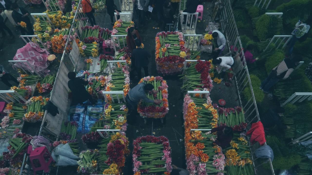 A record-breaking flower market
